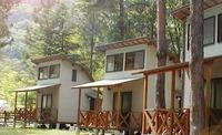 camp_main_2.jpg